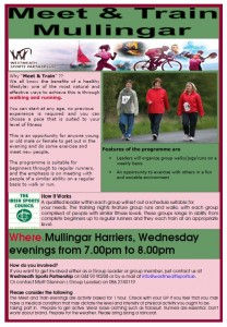 Mullingar Meet& Train Flyer